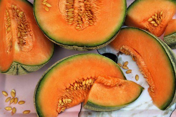 Hunajameloni
